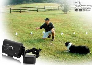 Electronic Pet Dog Fencing System