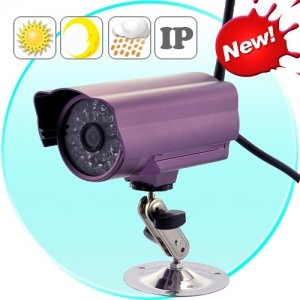 Outdoor IP Camera with microSD Recording