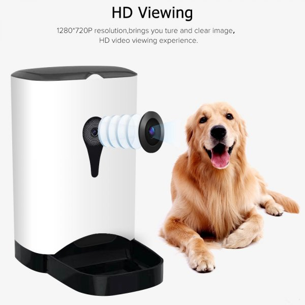 automatic food dispenser and a dog