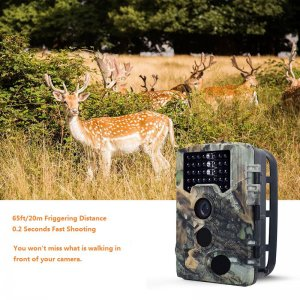 1080p Trail Camera – 2.31-Inch Display